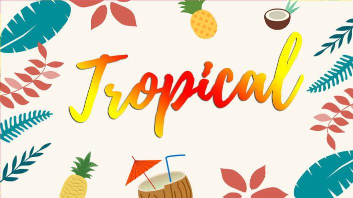 Tropical du 29/01/2020