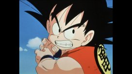 image du programme Dragon Ball