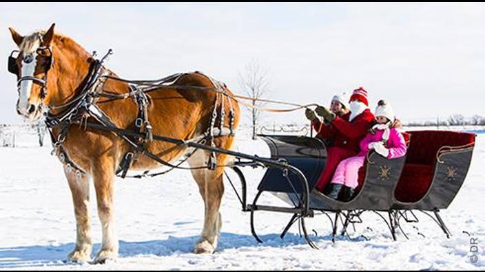 Image du programme Cher Père Noël...
