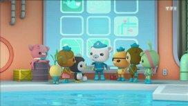 image du programme Octonauts