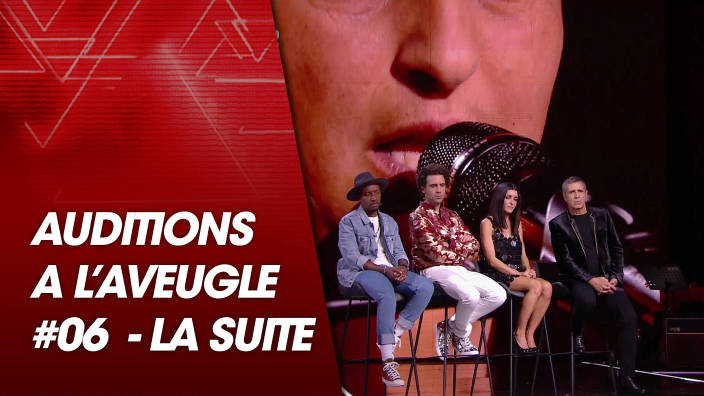 The Voice - The Voice, la suite