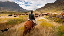 image de la recommandation Destination Wild Chili : La vie dans le désert