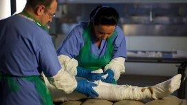 image du programme Les dernières momies