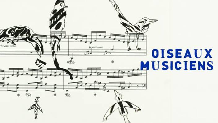 Oiseaux musiciens