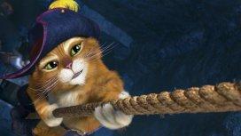 image du programme Le Chat potté