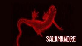 image de la recommandation Salamandre