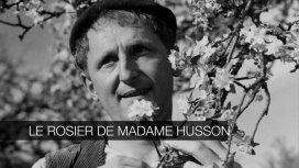 image du programme Le rosier de Madame Husson