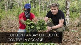 image de la recommandation Gordon ramsay en guerre contre la cocaïne