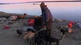 image du programme INTO THE WILD:ALASKA