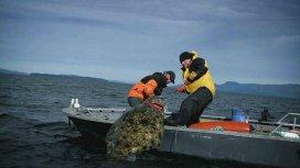 image du programme ALASKA:SEULS AU MONDE
