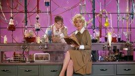 image du programme Docteur Jerry et Mister Love