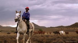 image du programme Karoo cowboy