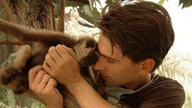 image du programme Kalaweit wildlife rescue