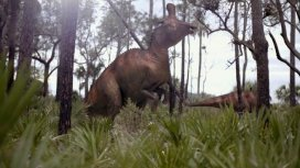 image du programme Dino Hunt