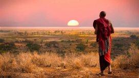 image du programme Masai Mara : la migration de tous les dangers