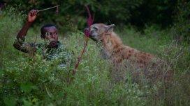 image du programme Les hyènes de Harar