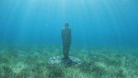 image du programme Leurs vies aquatiques