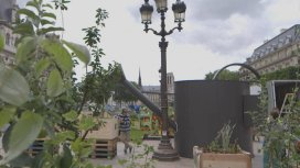 image du programme Naturopolis