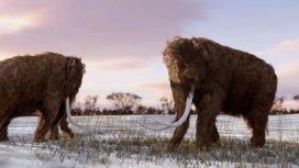 image du programme La terre des géants
