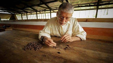 Les Maîtres du Chocolat
