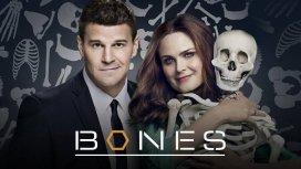 image du programme Bones