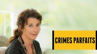 Crimes parfaits - S01