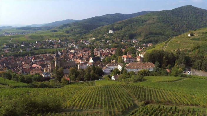 L'Alsace, de la plaine d'Alsace au massif des...