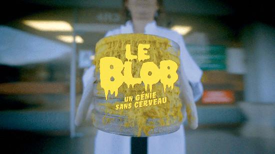 Le Blob, un génie sans cerveau