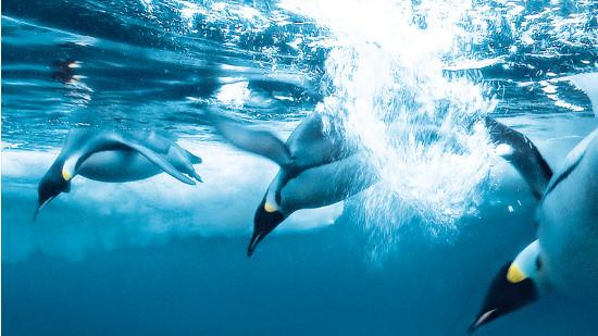 Le Peuple des océans ép. 1 et 2