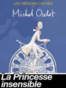 Les trésors cachés de Michel Ocelot : la princesse insensible