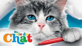 Ma vie de chat