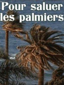 Pour saluer les palmiers