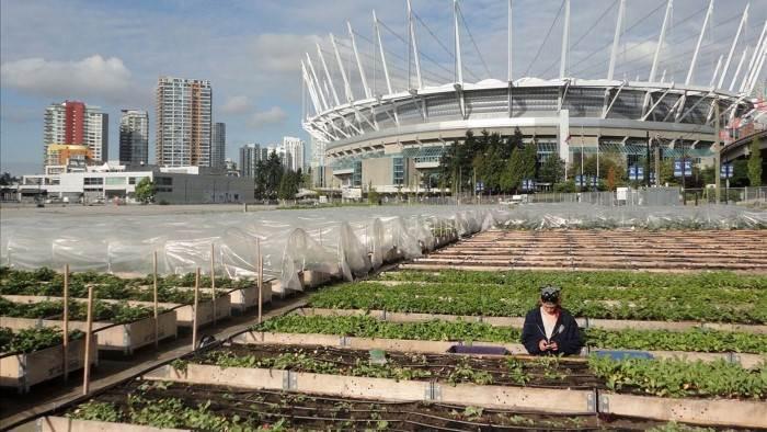 Image du programme Une revolution agricole u