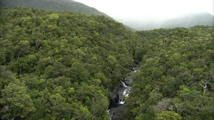 Image du programme Nouvelle-Calédonie, les sentinelles d...