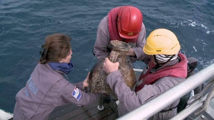 Image du programme Enquetes en eaux profondes