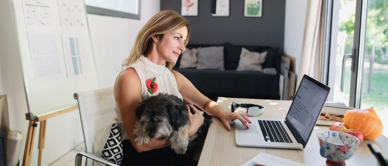 Pouvez-vous amener votre animal sur votre lieu de travail ?