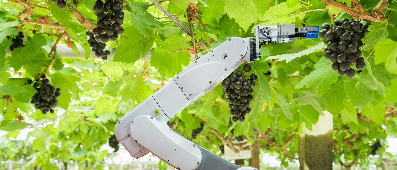Quand la technologie se met au service de nos agriculteurs