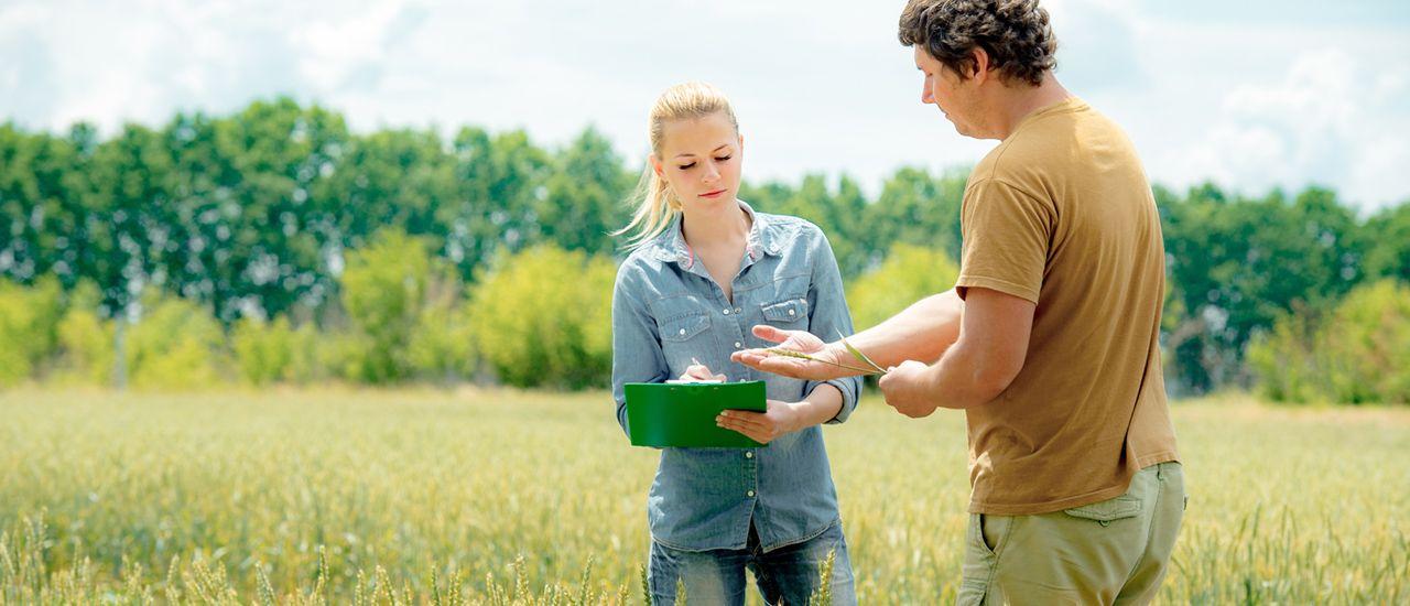 Exploitants agricoles, une allocation de remplacement en cas d'arrêt de travail