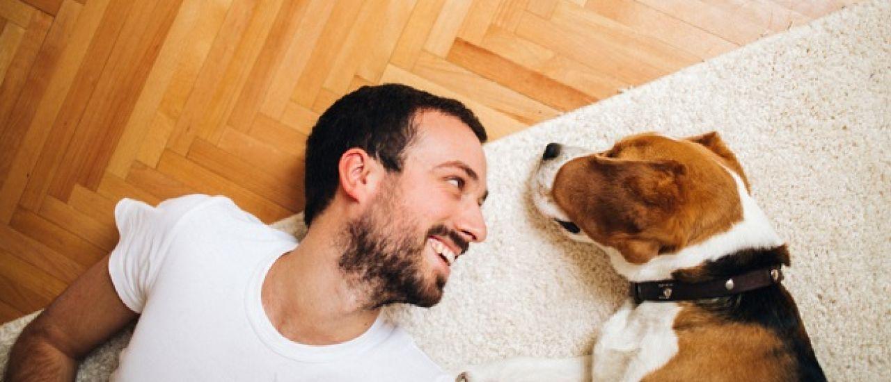 Suivez votre chien à la trace grâce à un tracker GPS