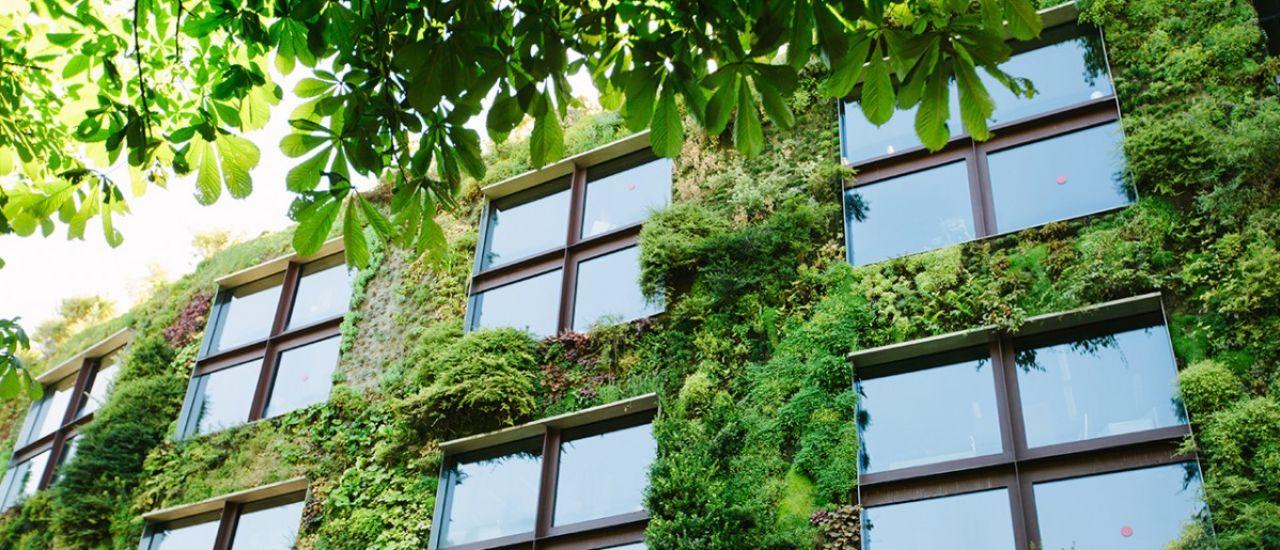 Nature en ville, retour à la campagne... Les créneaux porteurs de l'envie de vert